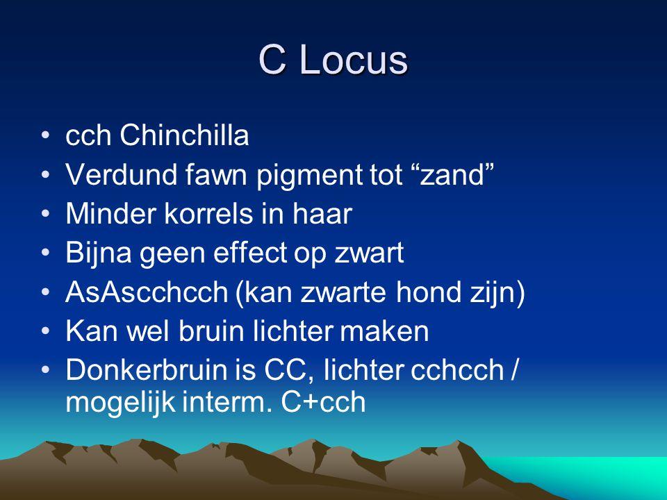 C Locus cch Chinchilla Verdund fawn pigment tot zand