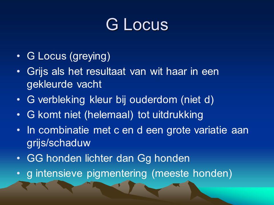 G Locus G Locus (greying)