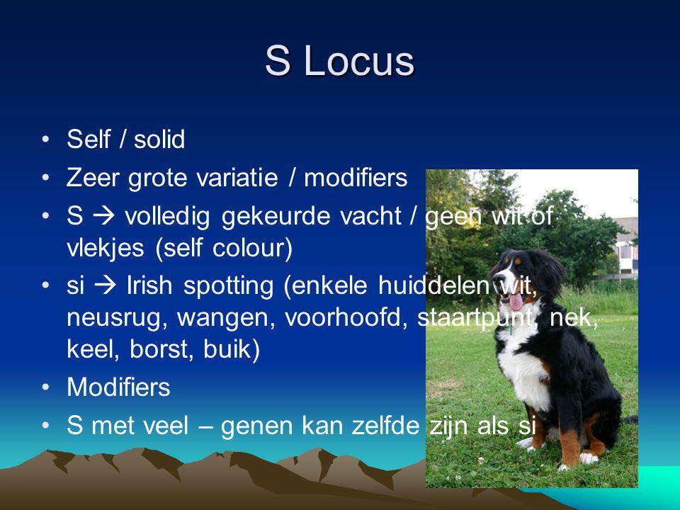 S Locus Self / solid Zeer grote variatie / modifiers