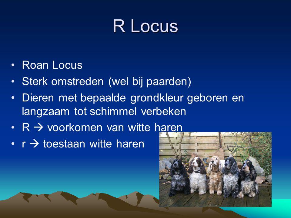 R Locus Roan Locus Sterk omstreden (wel bij paarden)