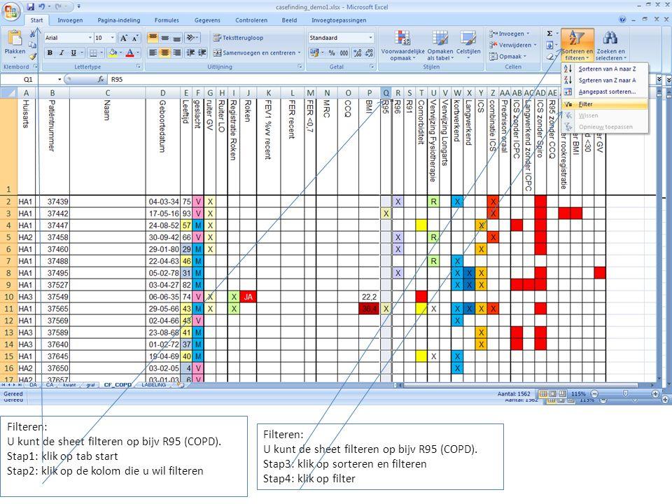 Filteren: U kunt de sheet filteren op bijv R95 (COPD). Stap1: klik op tab start. Stap2: klik op de kolom die u wil filteren.