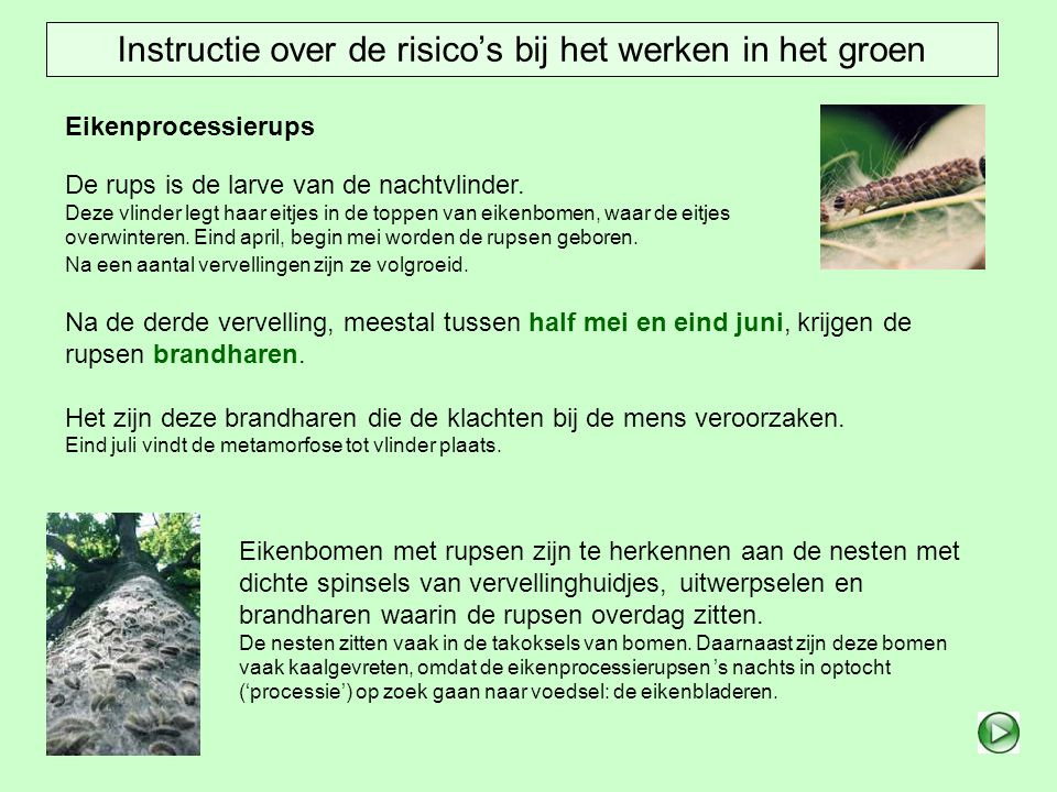 Instructie over de risico's bij het werken in het groen
