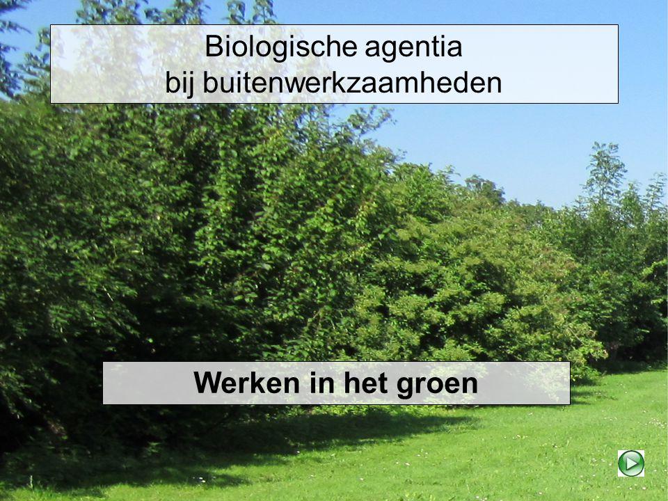 Biologische agentia bij buitenwerkzaamheden