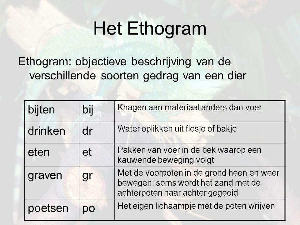 Het Ethogram Ethogram: objectieve beschrijving van de verschillende soorten gedrag van een dier. bijten.