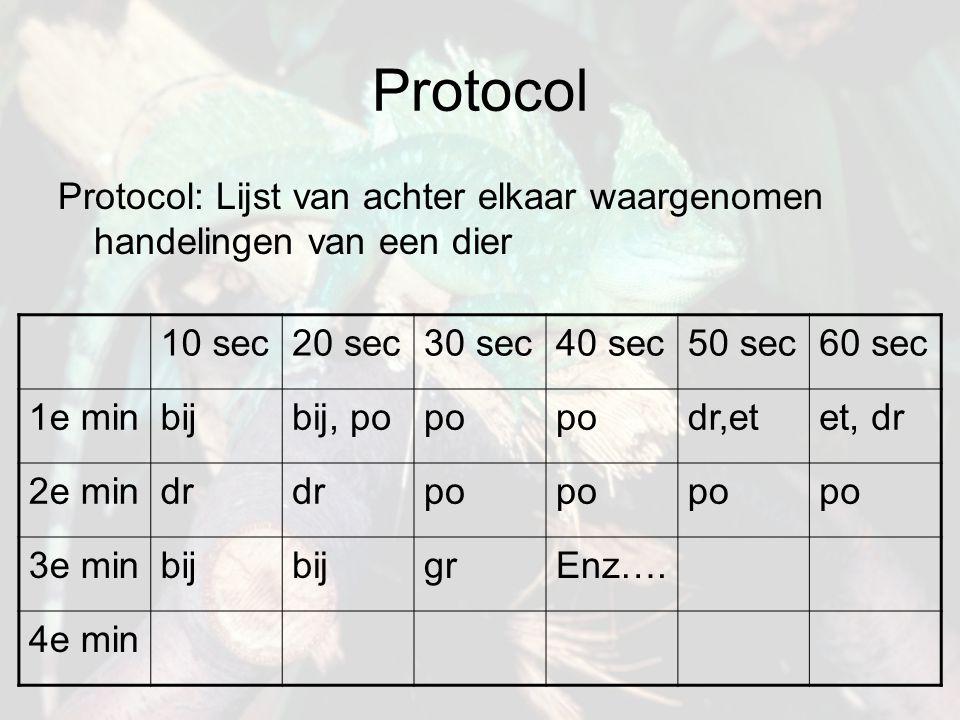 Protocol Protocol: Lijst van achter elkaar waargenomen handelingen van een dier. 10 sec. 20 sec. 30 sec.