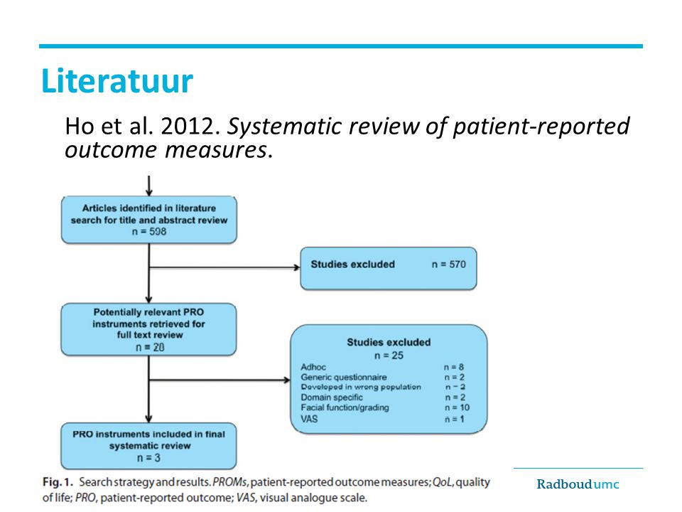 Literatuur Ho et al. 2012. Systematic review of patient-reported outcome measures.