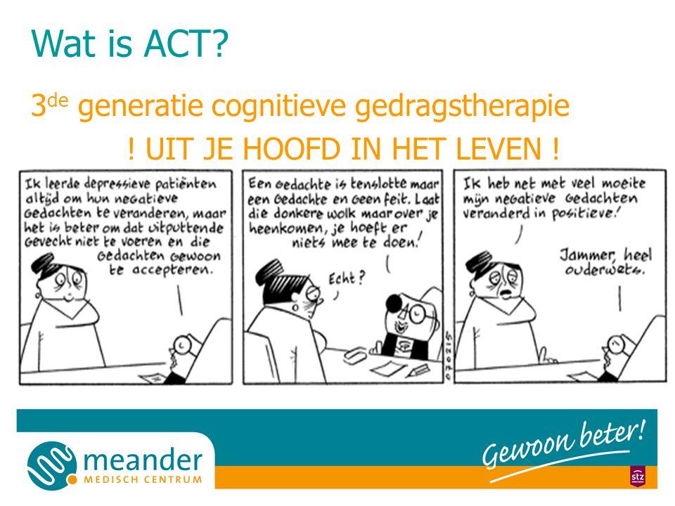 3de generatie cognitieve gedragstherapie ! UIT JE HOOFD IN HET LEVEN !
