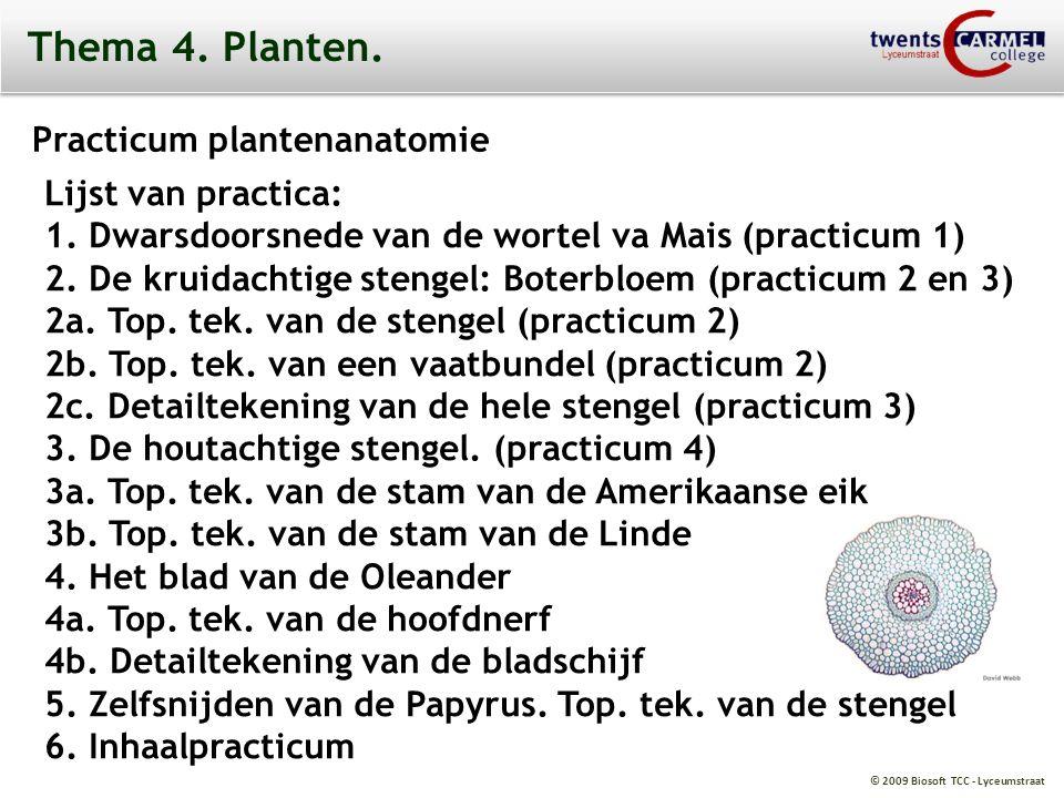 Thema 4. Planten. Practicum plantenanatomie Lijst van practica: