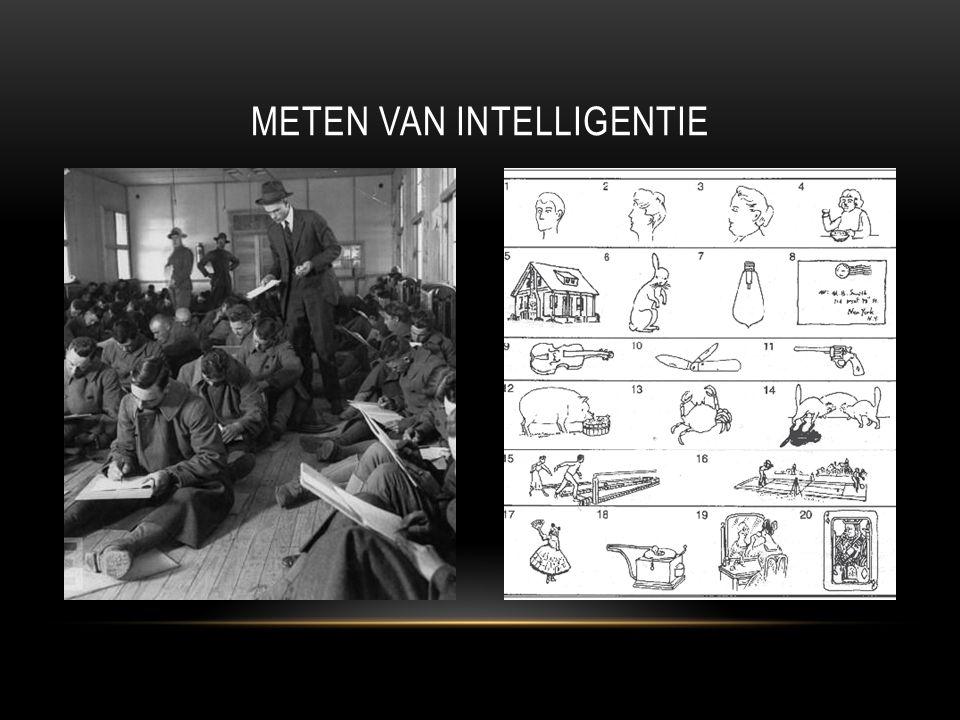 Meten van intelligentie