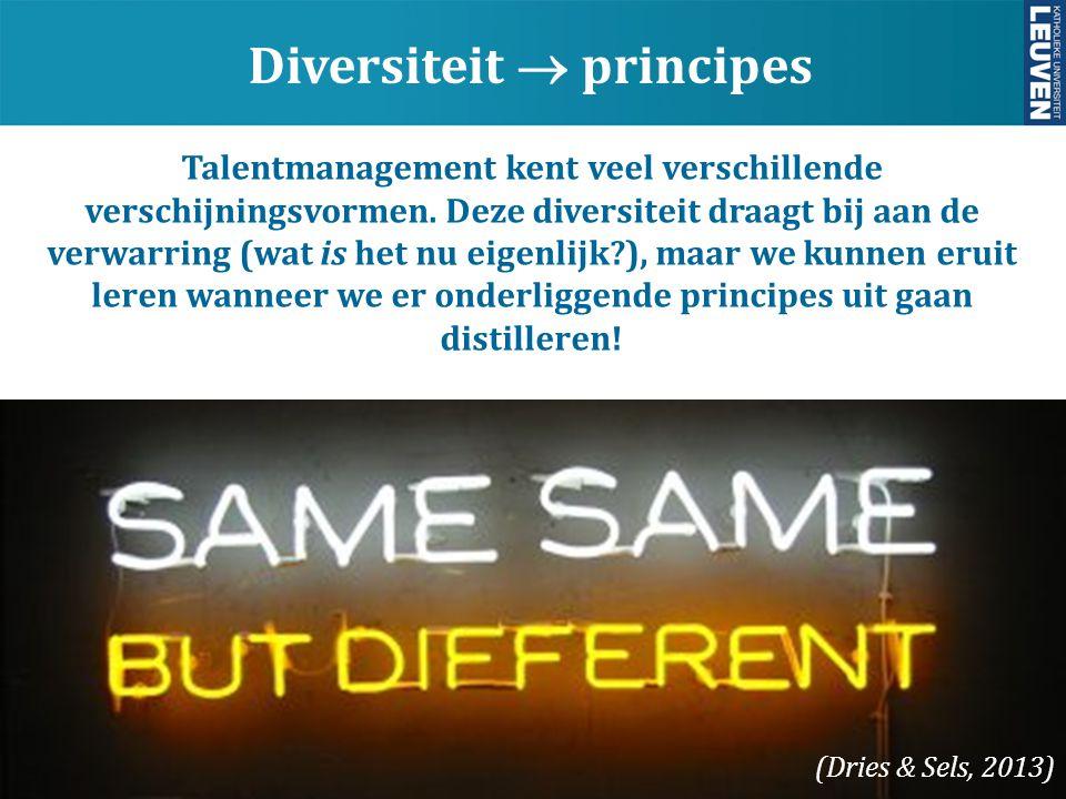 Diversiteit  principes