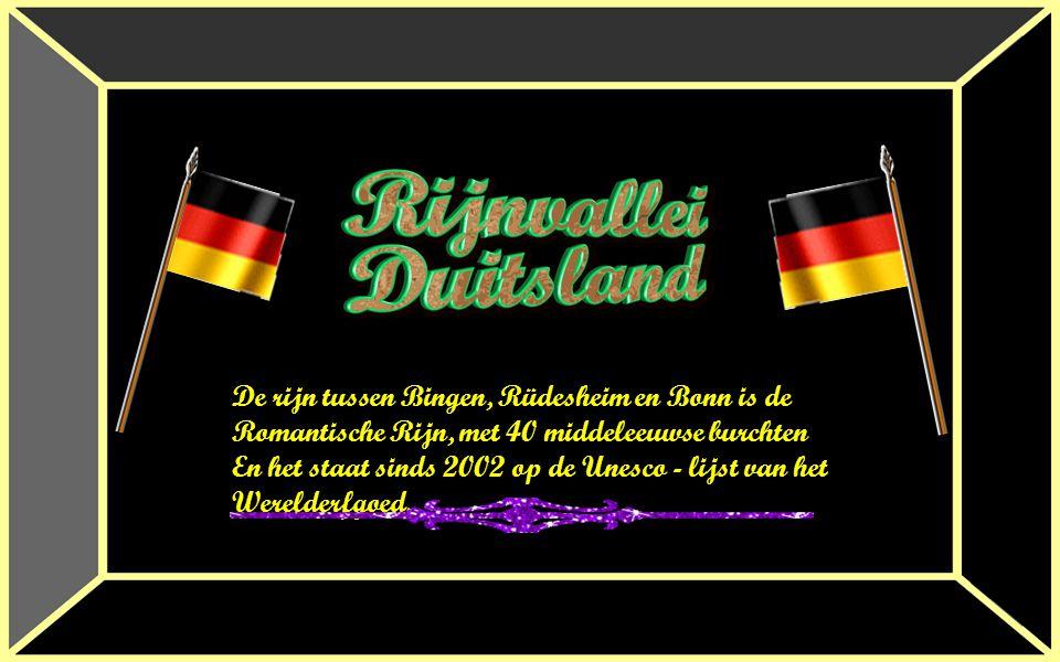 De rijn tussen Bingen, Rüdesheim en Bonn is de
