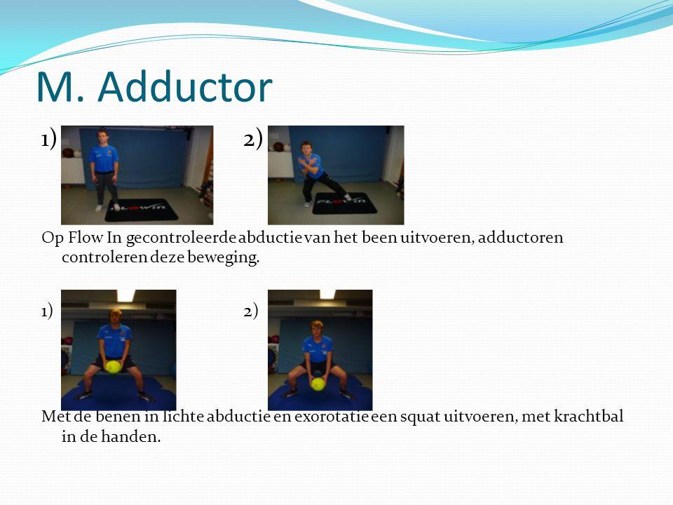 M. Adductor 1) 2) Op Flow In gecontroleerde abductie van het been uitvoeren, adductoren controleren deze beweging.