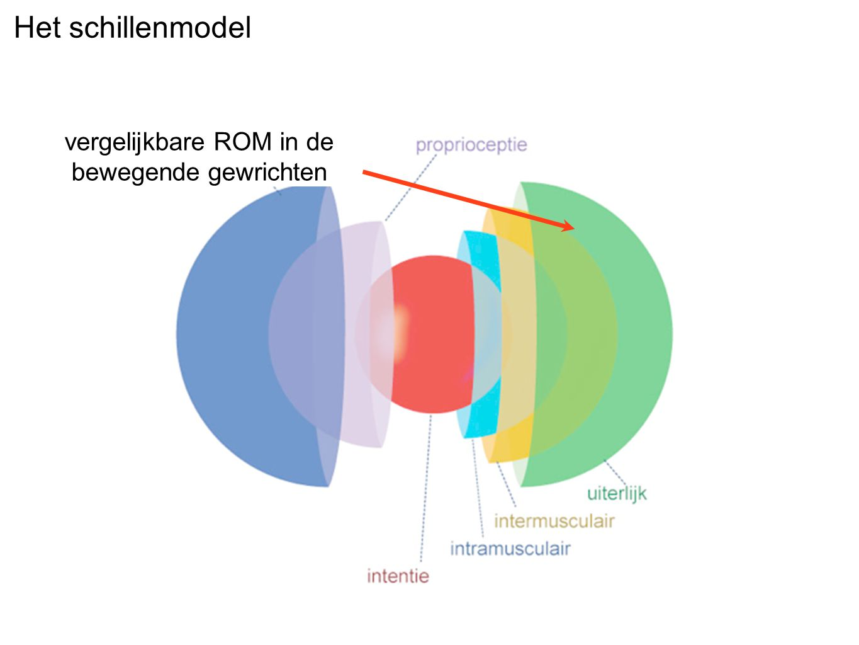 vergelijkbare ROM in de bewegende gewrichten