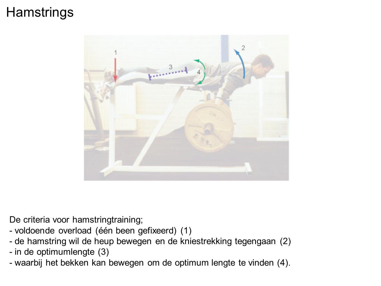Hamstrings De criteria voor hamstringtraining;