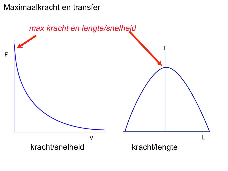 Maximaalkracht en transfer