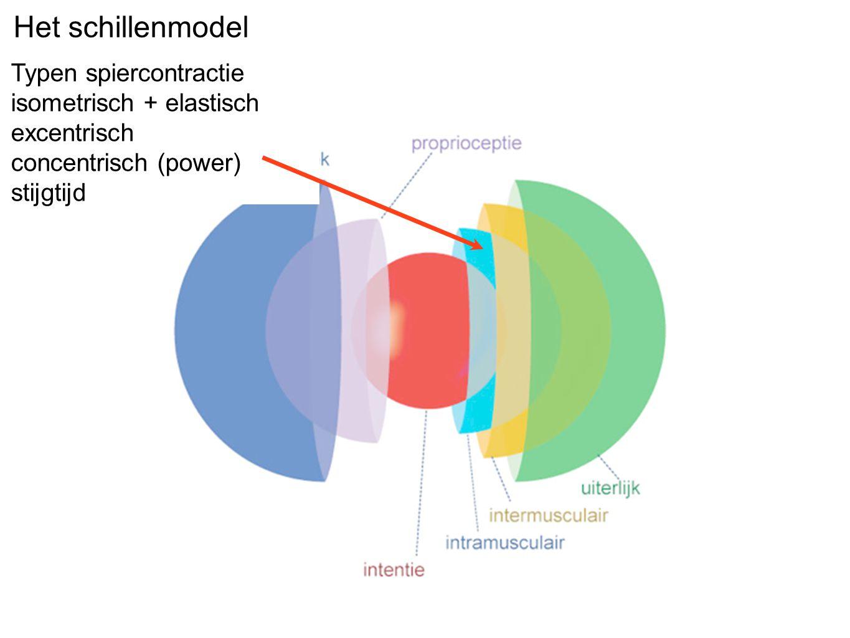 Het schillenmodel Typen spiercontractie isometrisch + elastisch