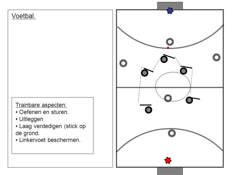 Voetbal. Trainbare aspecten: Oefenen en sturen. Uitleggen