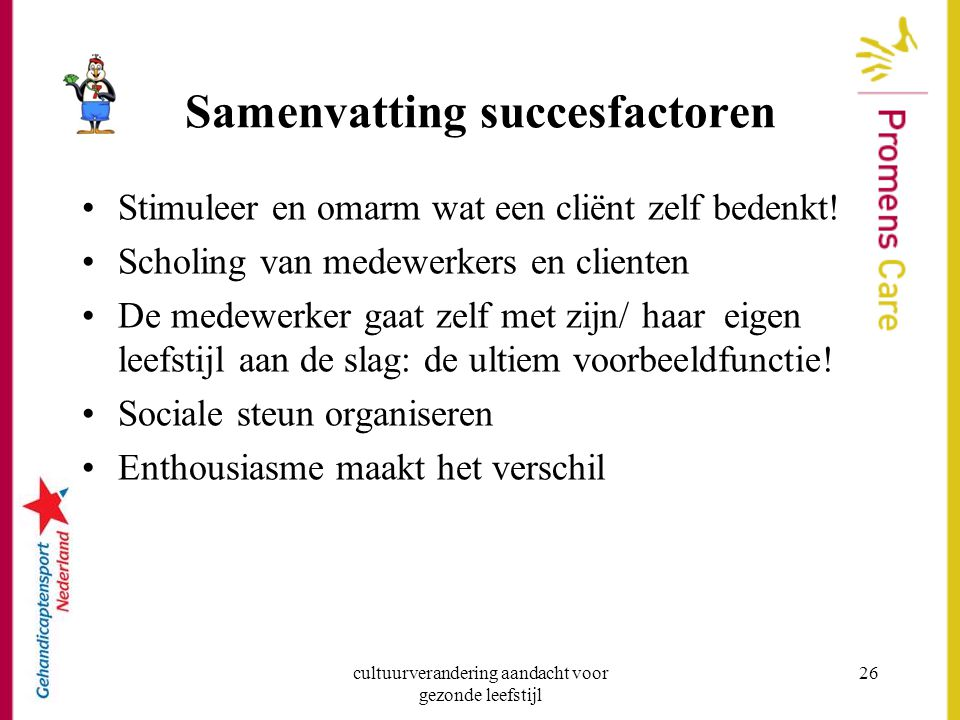 Samenvatting succesfactoren