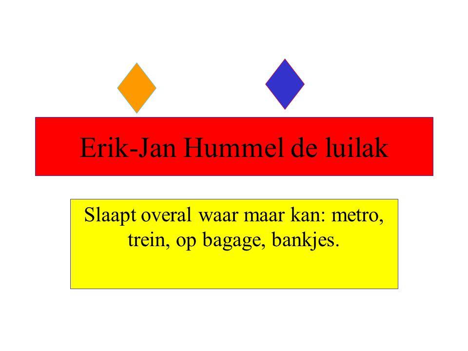 Erik-Jan Hummel de luilak