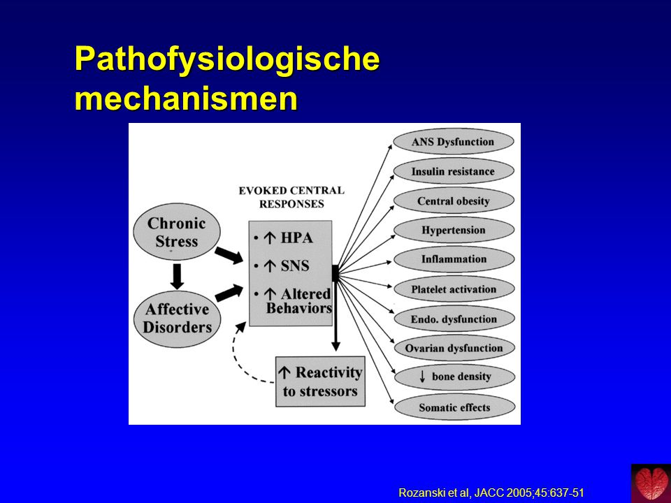Pathofysiologische mechanismen