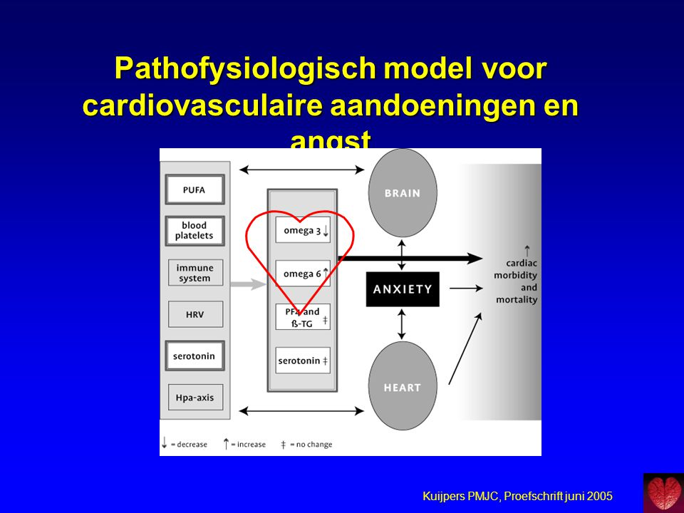 Pathofysiologisch model voor cardiovasculaire aandoeningen en angst
