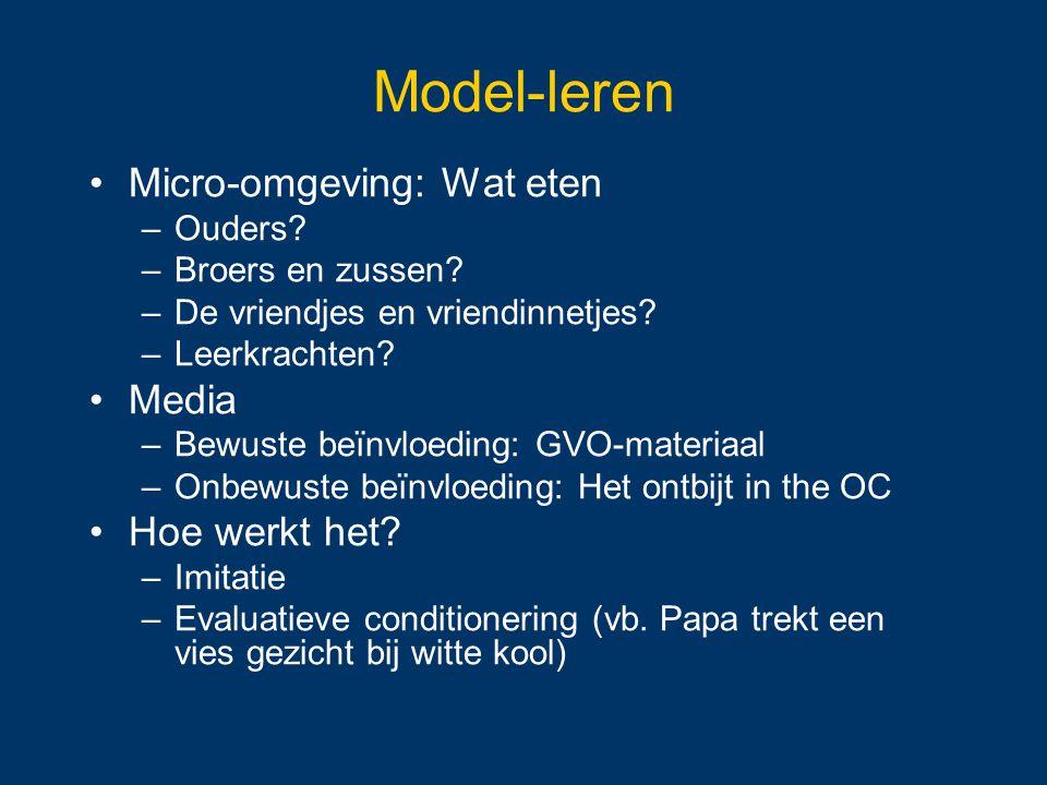 Model-leren Micro-omgeving: Wat eten Media Hoe werkt het Ouders