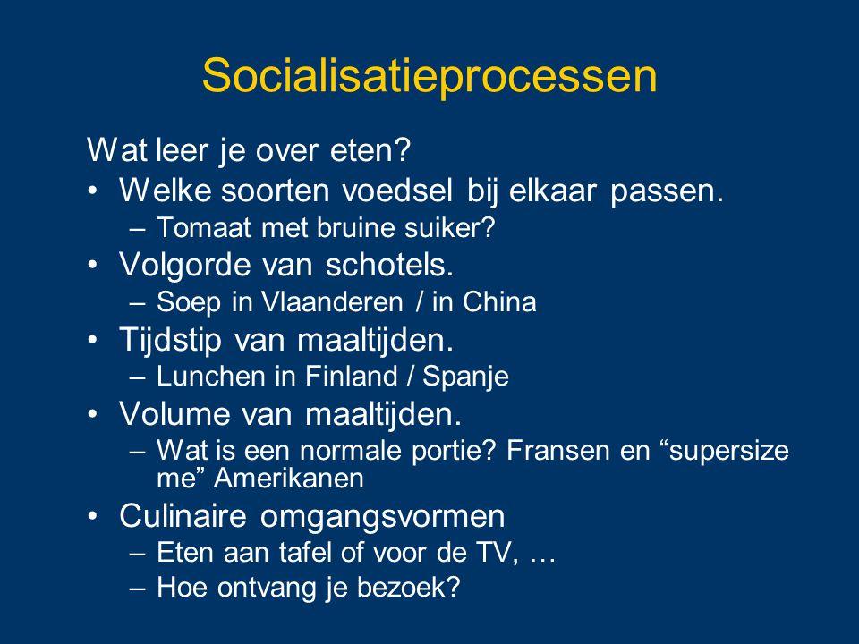 Socialisatieprocessen