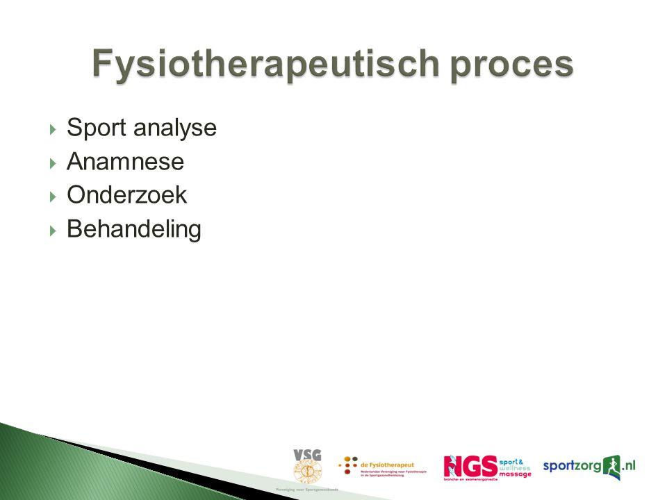 Fysiotherapeutisch proces