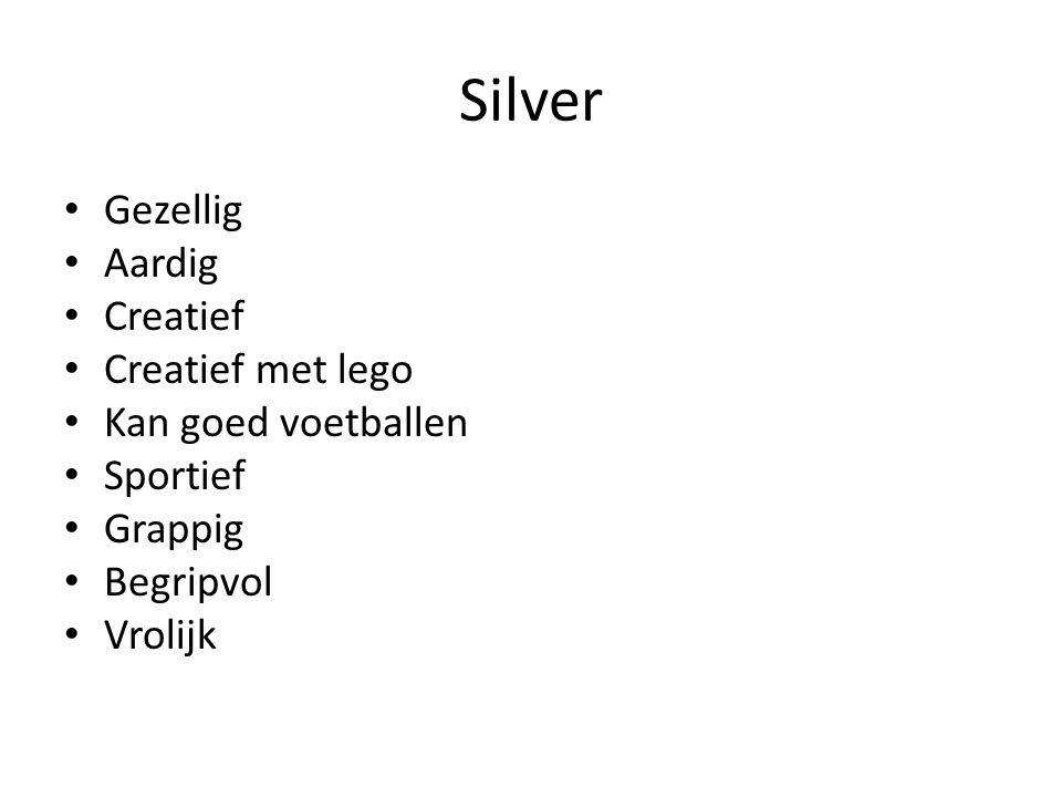 Silver Gezellig Aardig Creatief Creatief met lego Kan goed voetballen