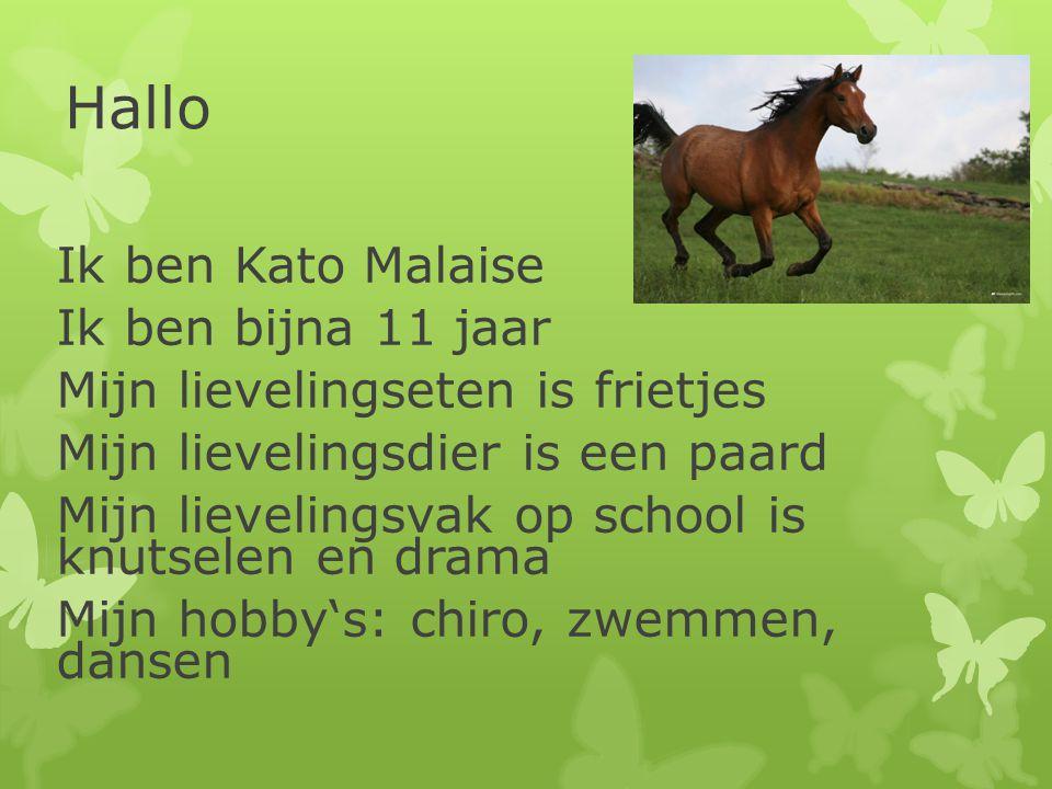 Hallo Ik ben Kato Malaise Ik ben bijna 11 jaar
