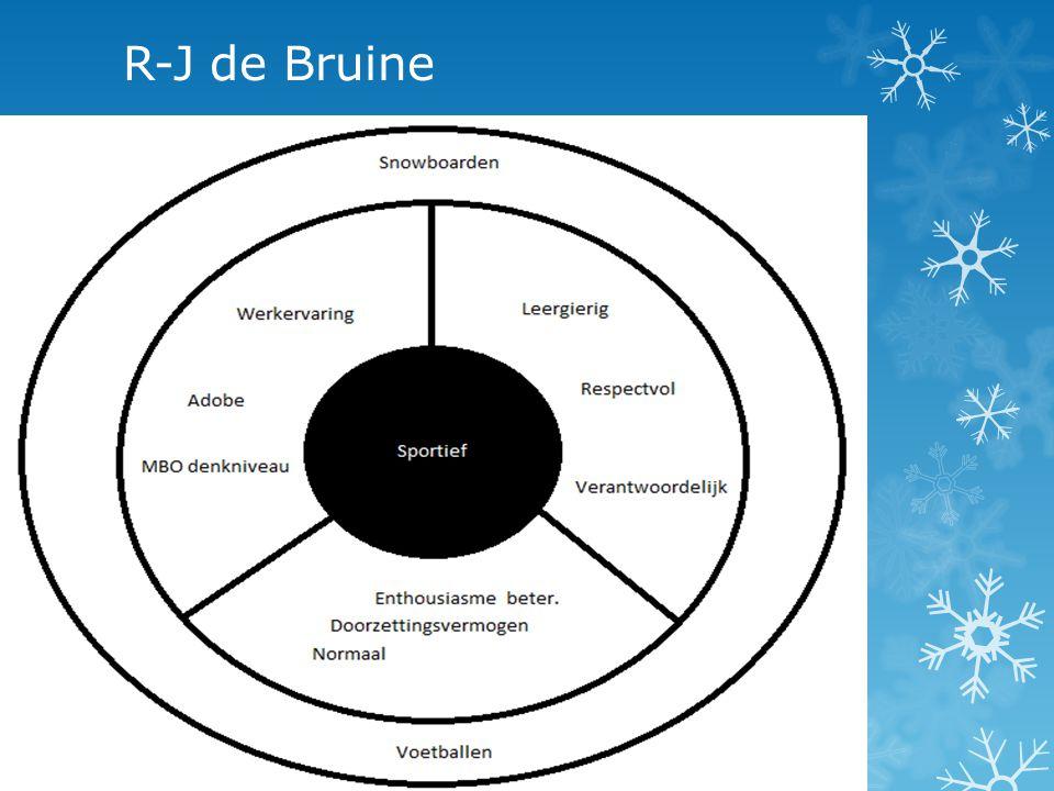 R-J de Bruine