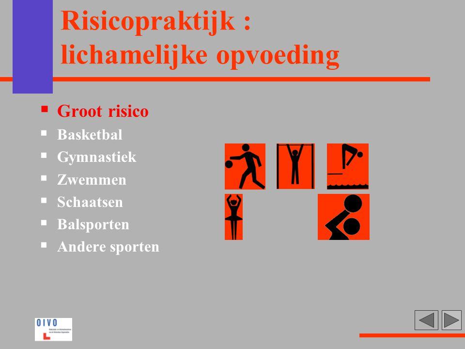 Risicopraktijk : lichamelijke opvoeding