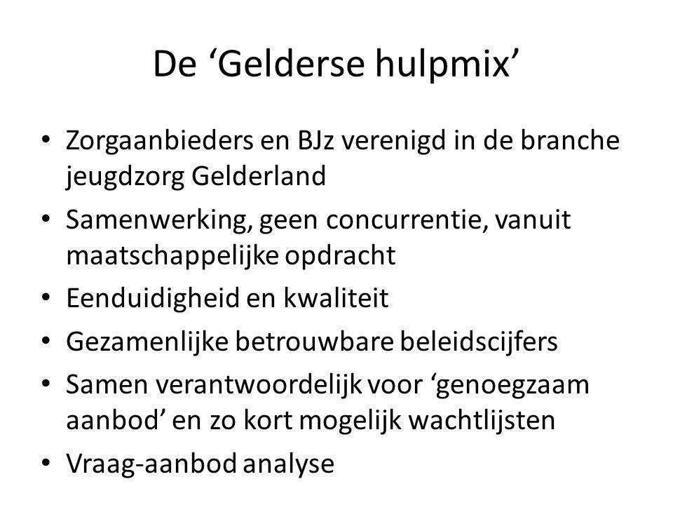 De 'Gelderse hulpmix' Zorgaanbieders en BJz verenigd in de branche jeugdzorg Gelderland.