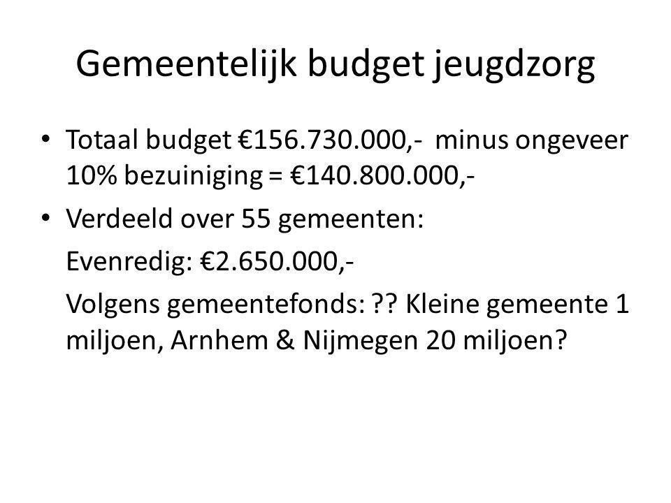 Gemeentelijk budget jeugdzorg