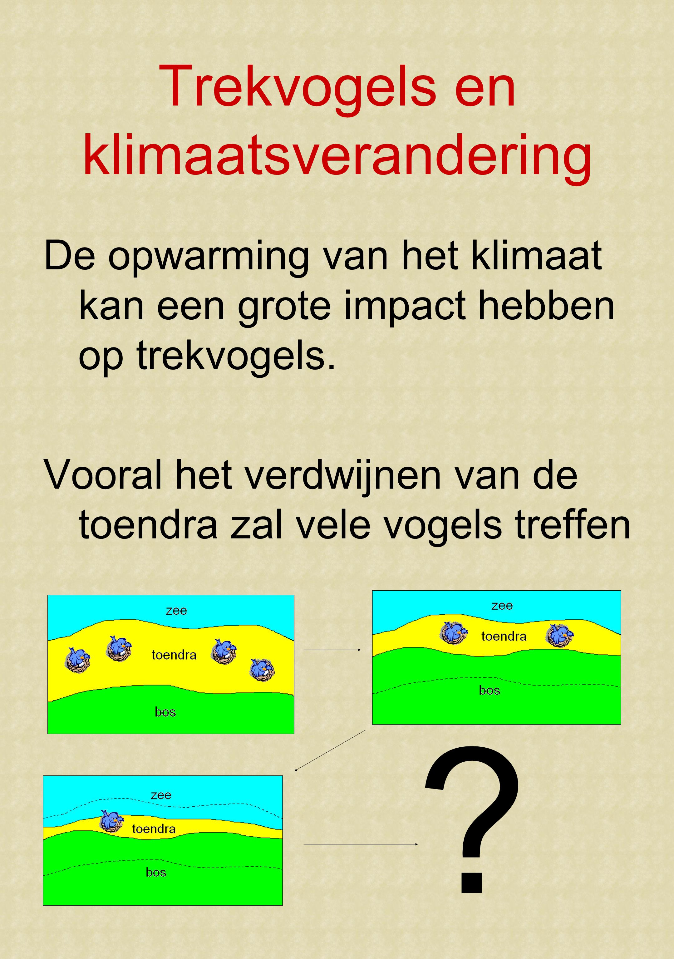 Trekvogels en klimaatsverandering