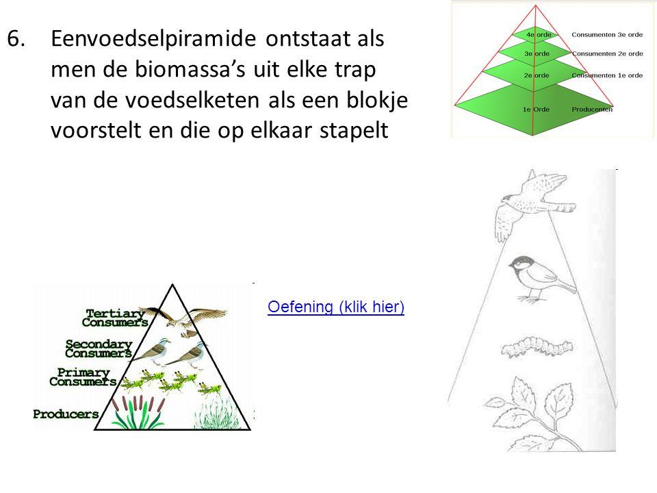 Eenvoedselpiramide ontstaat als men de biomassa's uit elke trap van de voedselketen als een blokje voorstelt en die op elkaar stapelt