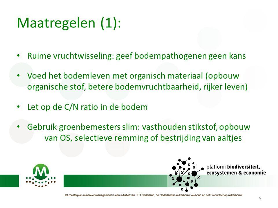 Maatregelen (1): Ruime vruchtwisseling: geef bodempathogenen geen kans