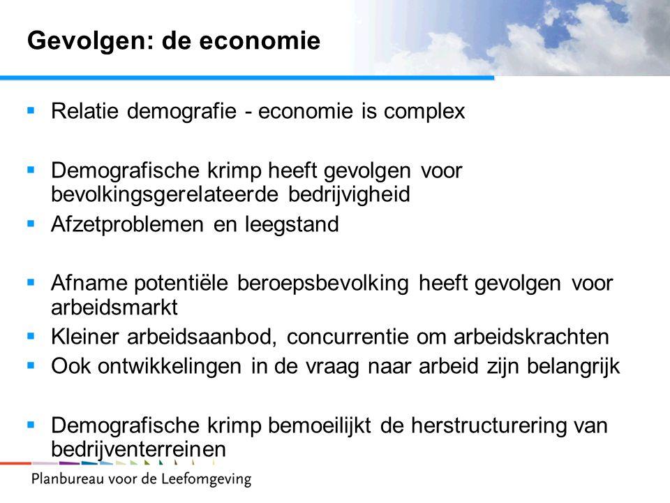 Gevolgen: de economie Relatie demografie - economie is complex