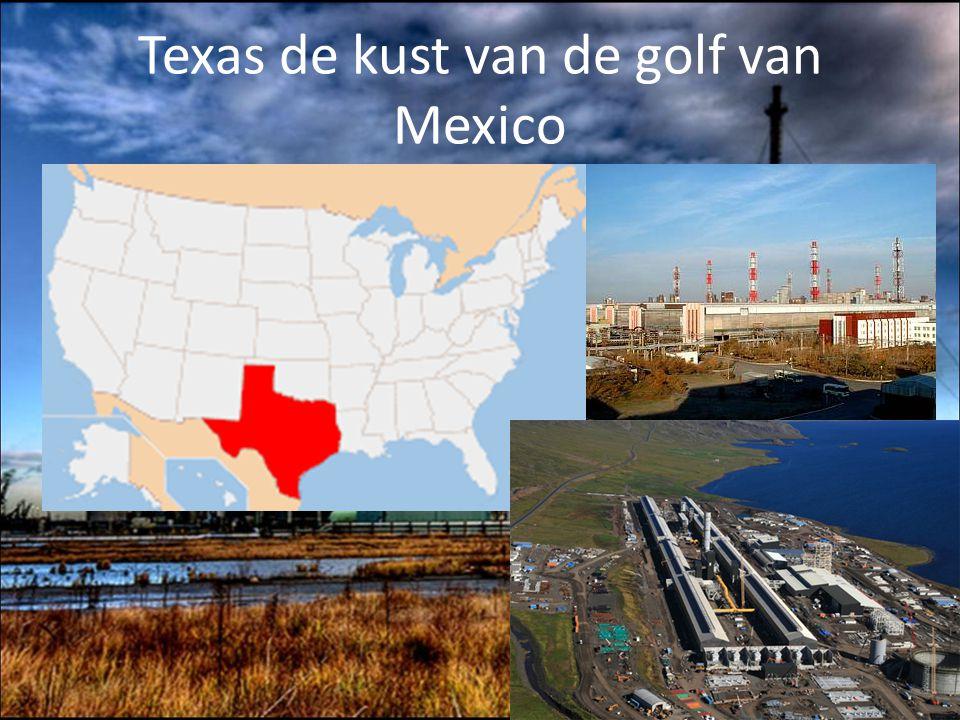 Texas de kust van de golf van Mexico