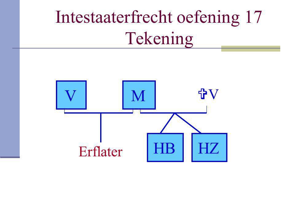 Intestaaterfrecht oefening 17 Tekening