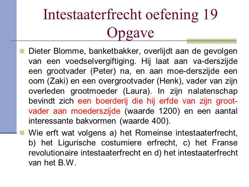 Intestaaterfrecht oefening 19 Opgave