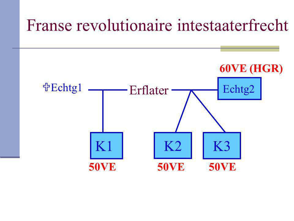 Franse revolutionaire intestaaterfrecht