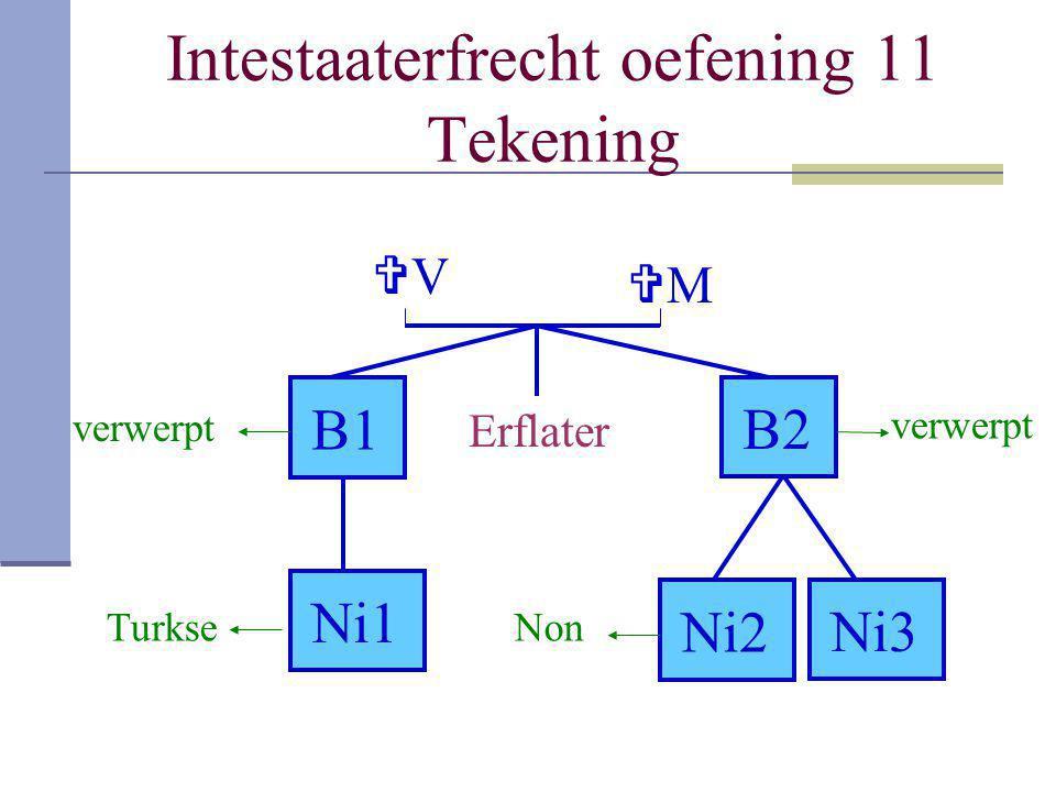 Intestaaterfrecht oefening 11 Tekening