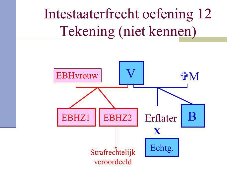 Intestaaterfrecht oefening 12 Tekening (niet kennen)