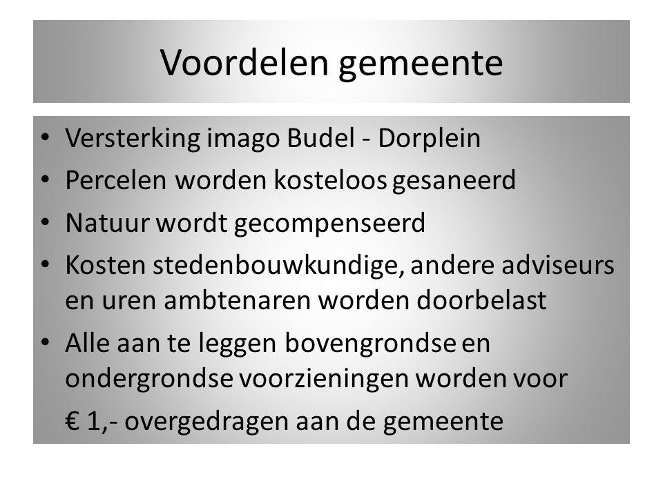 Voordelen gemeente Versterking imago Budel - Dorplein