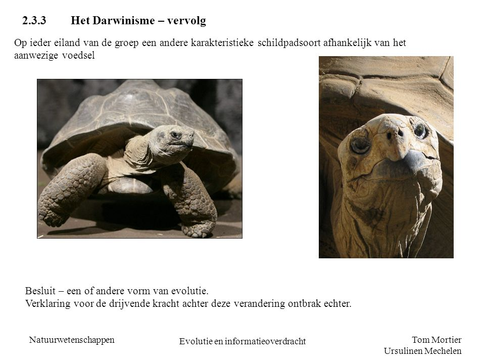Evolutie en informatieoverdracht