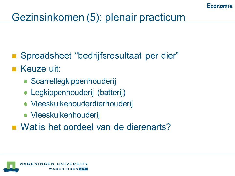 Gezinsinkomen (5): plenair practicum