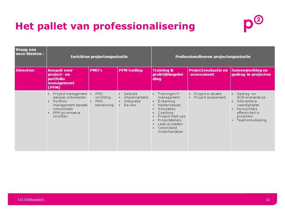 Het pallet van professionalisering