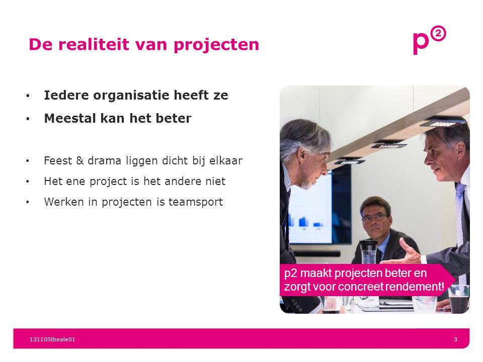 De realiteit van projecten