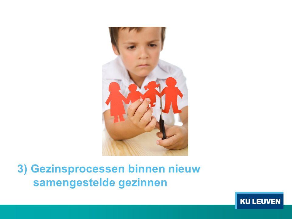 3) Gezinsprocessen binnen nieuw samengestelde gezinnen
